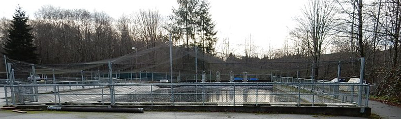 Tulalip Natural Resources image of view of salmon hatchery